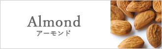 シチリア産アーモンド 商品一覧
